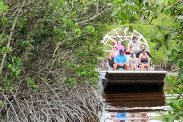 Everglades Tour In Miami By Africa One Tours