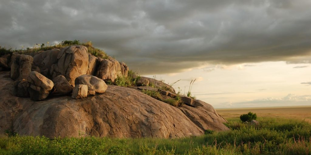 Tanzania Tours by Africa One Tours